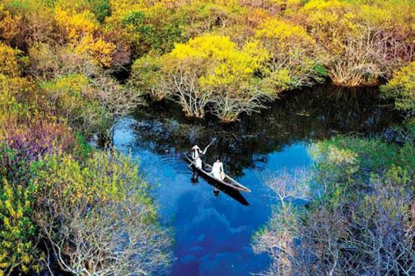 Khu rừng nguyên sinh Rú Chá