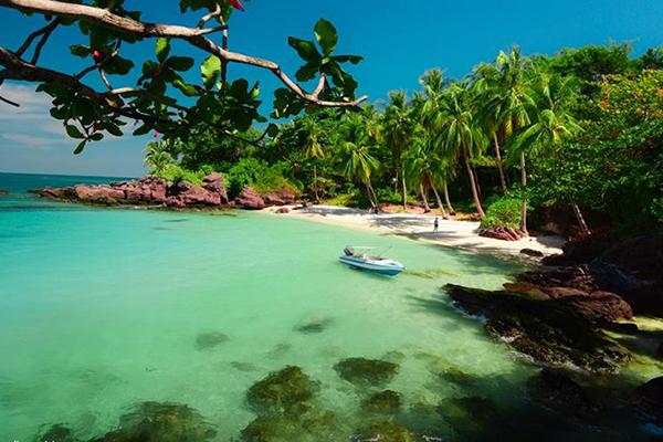 Đảo hoang đẹp thuần khiết với hàng cây tươi xanh