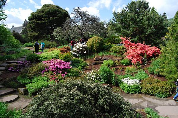 Cụm vườn thực vật Royal Botanic Garden
