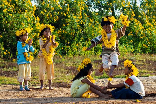 Các em bé vui đùa cùng hoa dã quỳ