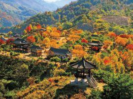 Những điểm du lịch nổi tiếng tại Hàn Quốc
