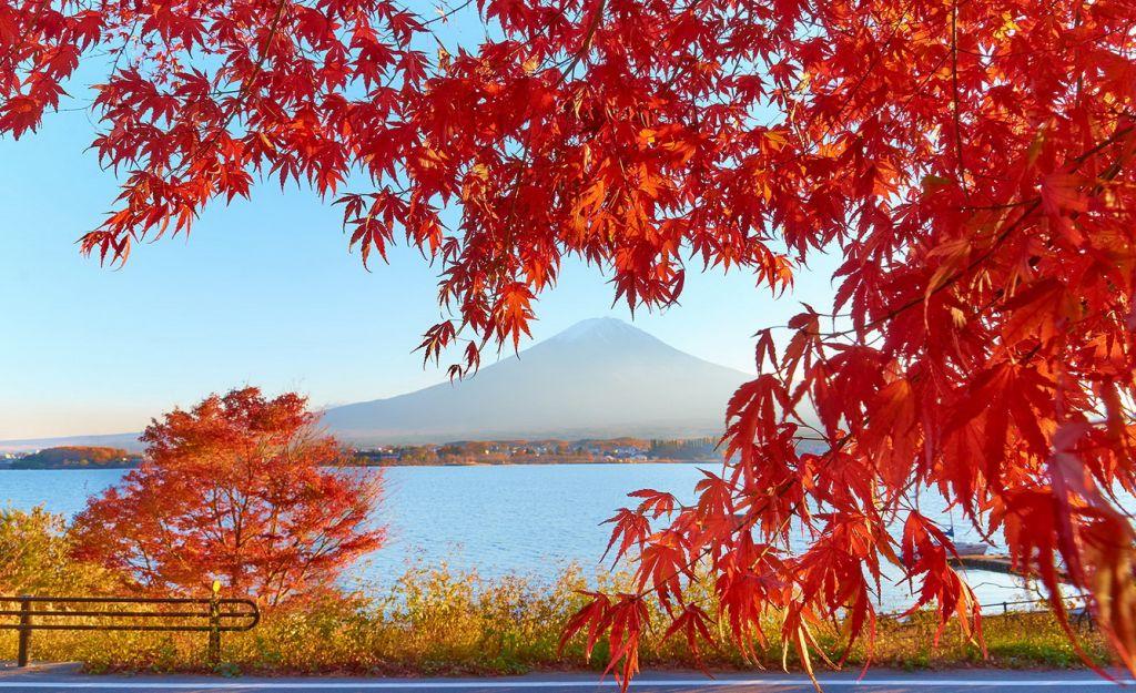 Những điểm du lịch nổi tiếng tại Nhật Bản