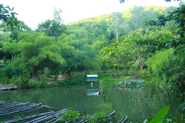 Sơn Trà Tịnh Viên