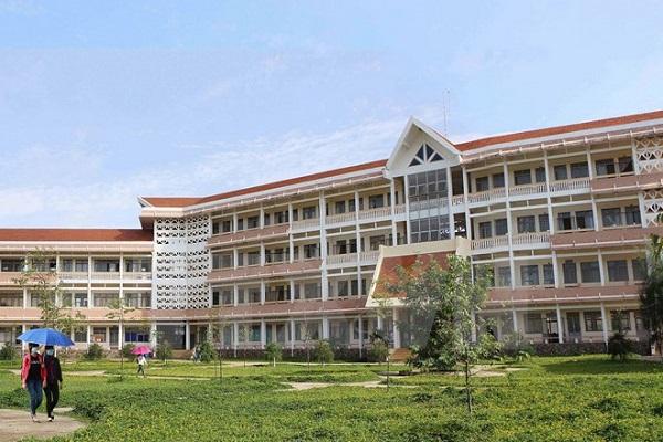 Trường Đại Học Tây Nguyên