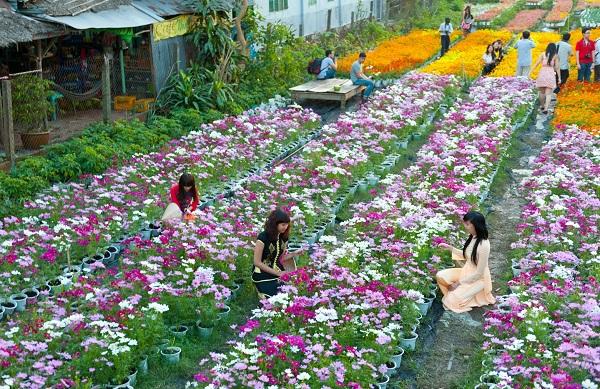 Vườn hoa trung tâm thành phố