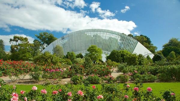 Vườn thực vật Adelaide