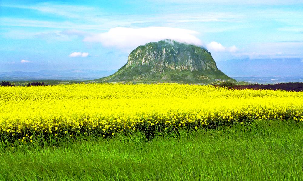 Núi Hallasan cao nhất Hàn Quốc