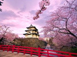 Vé máy bay đi Nhật bao nhiêu tiền
