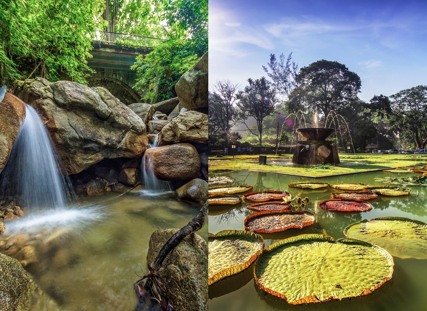 Vườn thực vật, vườn gia vị Penang